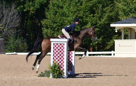 Tatiana Guletsky: student-athlete and competitive horse rider