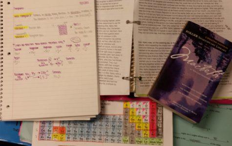 Homework: is it necessary?