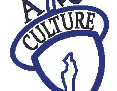 Students feel the pressure of Vernon Hills' AP culture