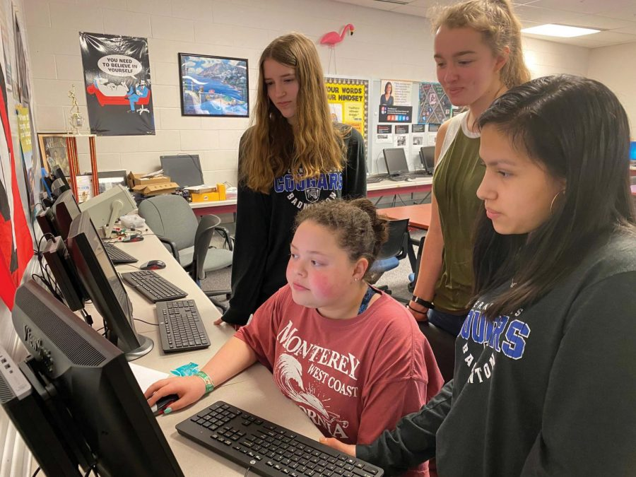 Image of girls looking at a computer screen.