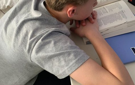 Freshman boy slumped over reading assignment in his bedroom