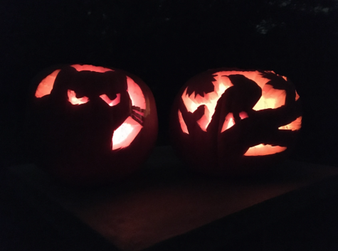 Pictured is two pumpkins, one with a cat carved onto it and one with a bird carved onto it.