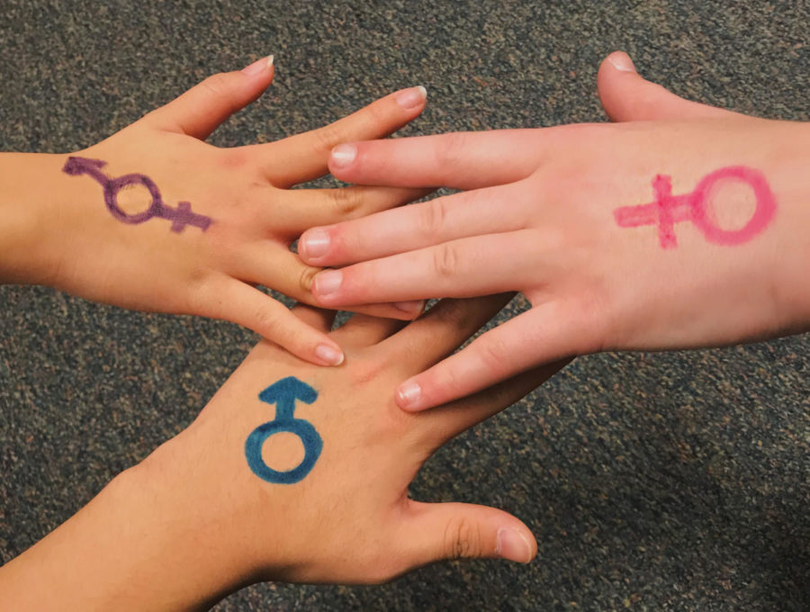 Students put their hands together with the hands having the different genders drawn on