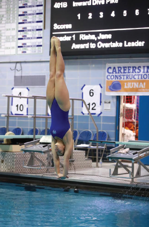 This is a photo of Allison Landis diving.