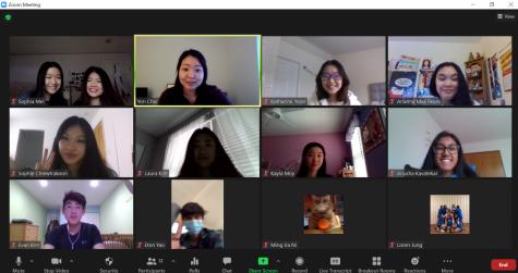 Image of an ASA Zoom meeting