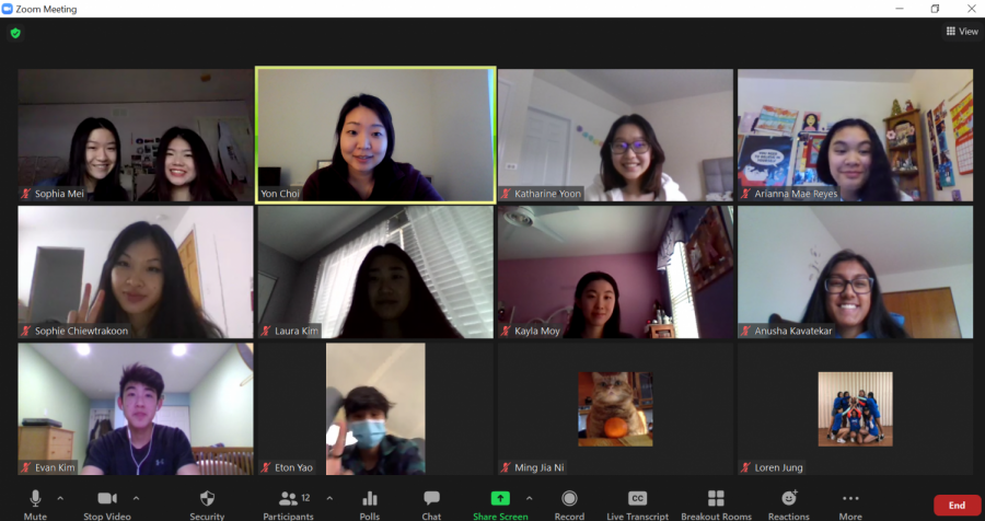 Image+of+an+ASA+Zoom+meeting